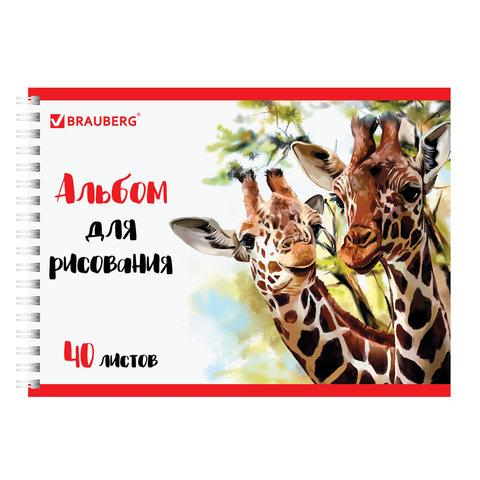 Альбом для рисования, А4, 40 л., гребень, обложка картон, BRAUBERG ЭКО, 205х290 мм,