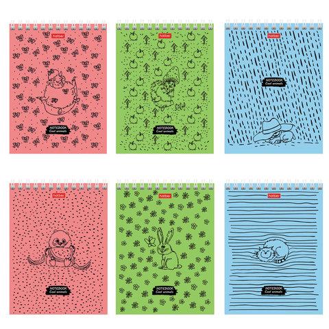 Блокнот МАЛЫЙ ФОРМАТ (110х145 мм) А6, 40 л., гребень, обложка картон, клетка, HATBER,