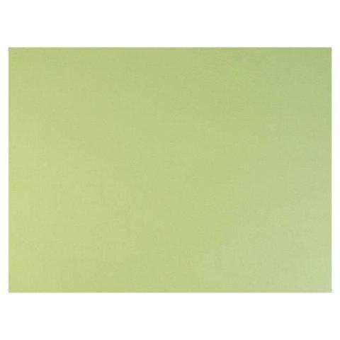 Бумага для пастели (1 лист) FABRIANO Tiziano А2+ (500х650 мм), 160 г/м2, салатовый теплый, 52551011