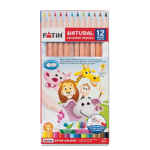 Карандаши цветные PENSAN (FATIH), 12 цветов, заточенные, некрашеный корпус, картонная упаковка, 33113