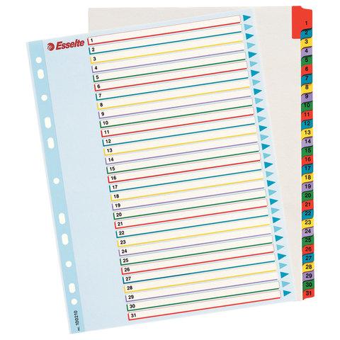 Разделитель документов для папок картонный ESSELTE, А4+, цифровой 1-31, с ламинированным оглавлением, 100210
