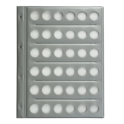 Планшет-вкладыш А4 на 36 монет, ПВХ, с перфорацией, с картонным разделителем для записей, ДПС, 2867/36