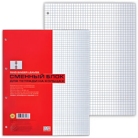 Сменный блок к тетради на кольцах, А4, 80 листов, HATBER,