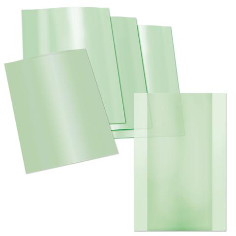 Пакеты для вакуумной упаковки купюр, комплект 500 шт., 300х420 мм, 3 слоя, 90 мкм